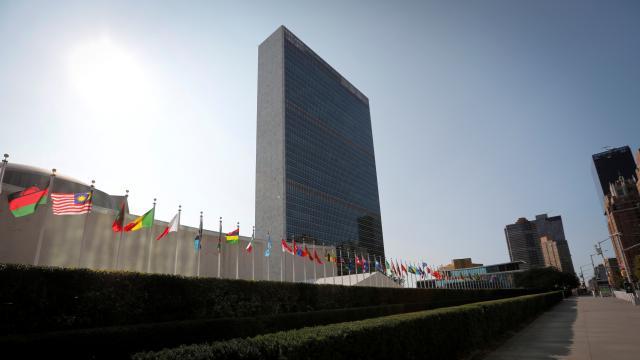 BM Etiyopyadaki IOM Direktörünü görevden uzaklaştırdı