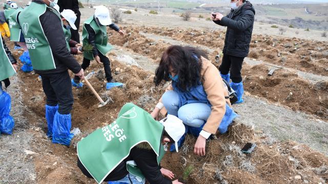 Çorum Valisi Mustafa Çiftçi sığınmacı çocuklarla fidan dikti
