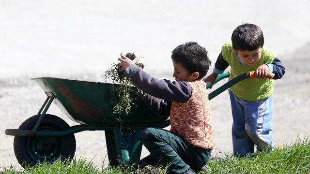 Doğu Karadenizde çiftçiler, ilkbaharın gelmesiyle tarlalarında temizliğe başladı