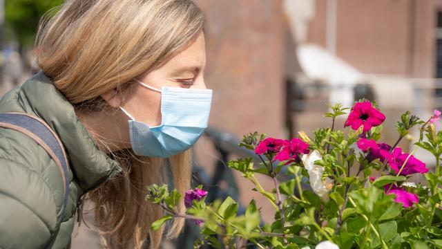 Koronavirüs nedeniyle kaybedilen koku duyusu geri kazanılabilir