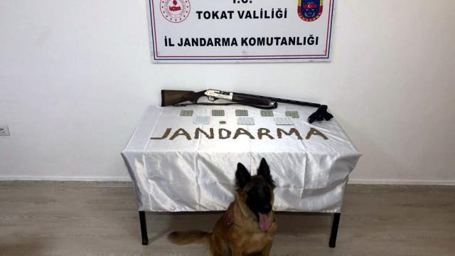Tokat, Sakarya ve İstanbulda uyuşturucu operasyonu: 11 kişi tutuklandı