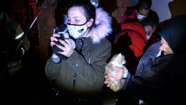 Yavru iki kedi itfaiye erleri tarafından kurtarıldı