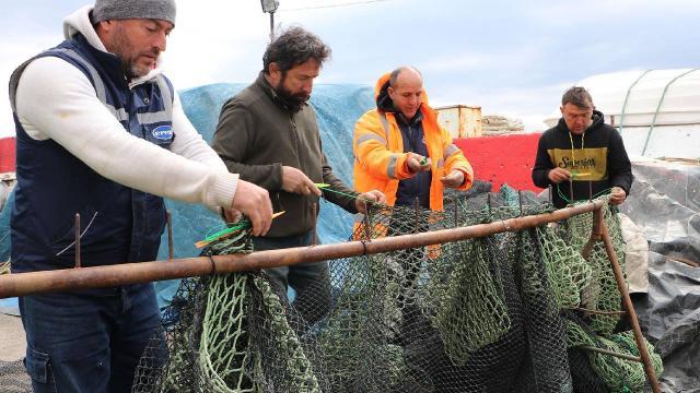 Tekirdağda deniz salyası balık sezonunu erken kapattırdı