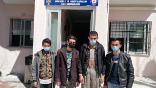 Osmaniye'de yurda yasa dışı yollarla giren 4 Afganistanlı yakalandı