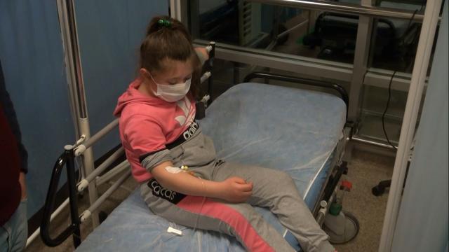 Kırıkkalede pitpull dehşeti: 8 yaşındaki çocuk yaralandı