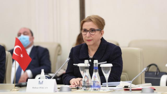 Pekcan: Azerbaycanla 15 milyar dolarlık ticaret hacmi hedefine yaklaştık
