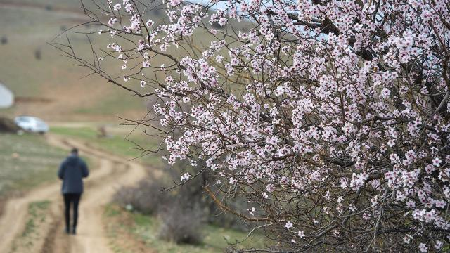 Doğu Anadoluda sıcaklık mevsim normalleri üzerinde