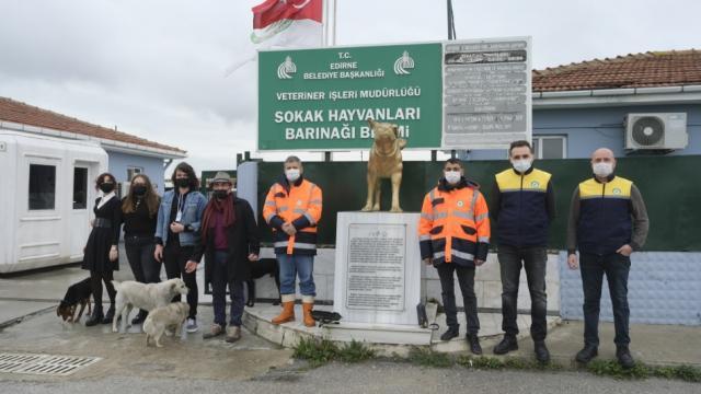 Edirnede lise öğrencileri kedi evlerini boyadı