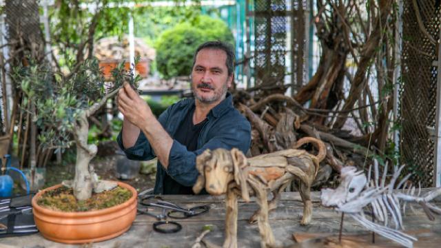 Doğadan topladığı odun parçalarına hayat veriyor