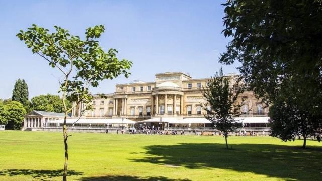 Buckingham Sarayının bahçesi halka açılıyor