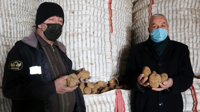 Ahlatlı patates üreticileri destek bekliyor
