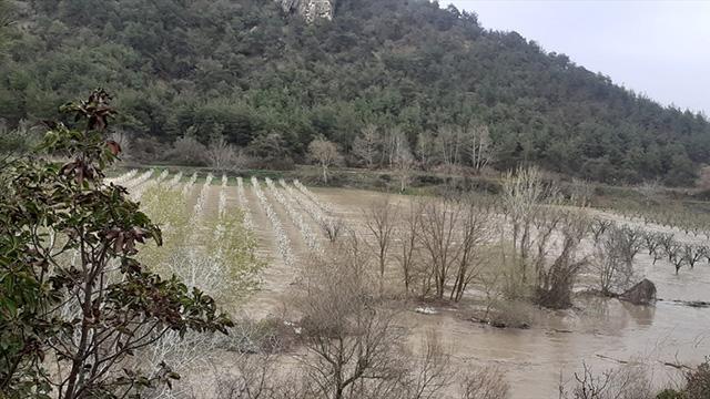 Bilecikte Göksu Nehri taştı: Tarım arazileri su altında kaldı