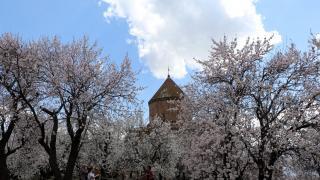 Akdamar Adası'nda ilkbahar manzaraları