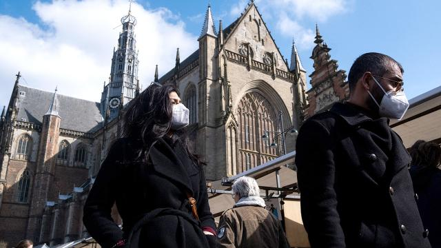 Hollandada kısıtlamalar gevşetiliyor