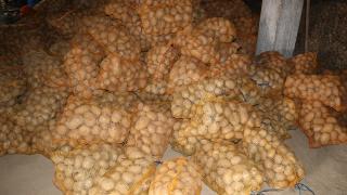 Patates ve soğanların ihtiyaç sahiplerine dağıtımına başlandı