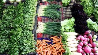 Yaş meyve sebze ihracatında yüzde 22 artış