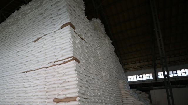 Türkşekerden 30 milyon dolarlık şeker ihracatı