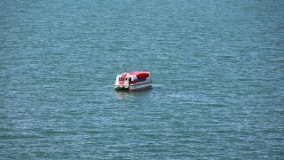 Van Gölü'nde keşfedilen balık türü araştırılacak