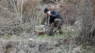 Emekli öğretmen doğada dolaşıp yabani ağaçlarını aşılıyor