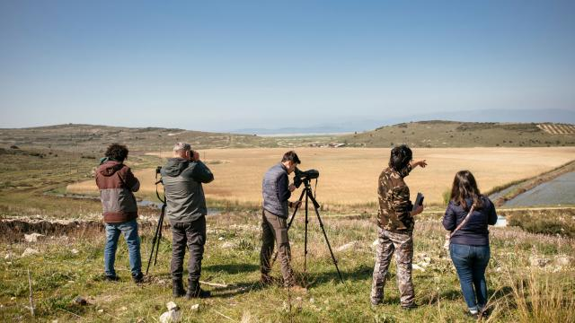Gediz Deltasındaki kuş göçü hareketliliği kayıt altına alınıyor