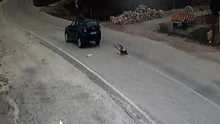 Yolun karşısına geçmek isteyen köpeğe çarpıp kaçtı