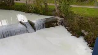 Süt tankeri nehre devrildi: Oluk oluk süt aktı