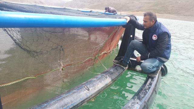 Vanda alabalık tesisleri denetlendi