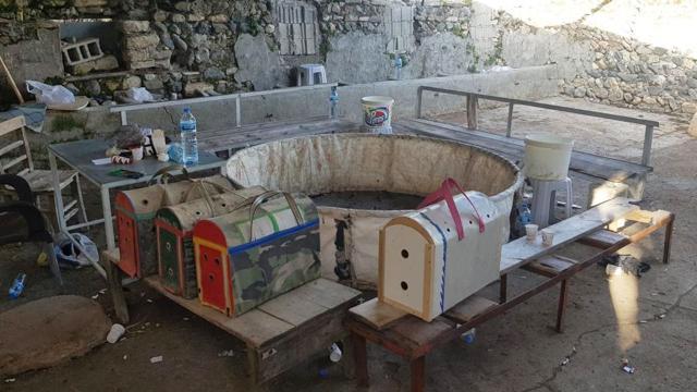 Horoz dövüştüren 6 kişiye para cezası