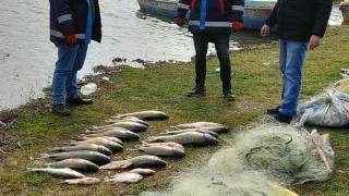 Kırklareli'nde kaçak avlanan balıklar suya bırakıldı