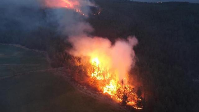 Muğladaki orman yangınlarına sabotaj soruşturması