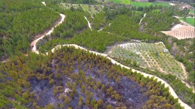 Yangında ikinci gün: 29 hektarlık alanda soğutma çalışmaları devam ediyor