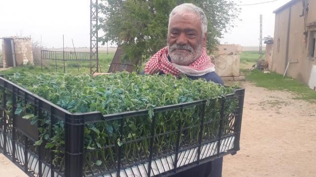 Türkiyenin desteğiyle Barış Pınarı Harekatı bölgesinde tarımsal çeşitlilik artırılıyor