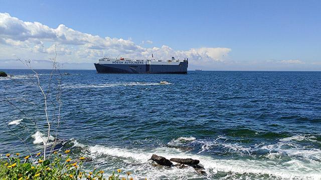 Tuzlada karaya oturan geminin kurtarılması için çalışmalara başlandı