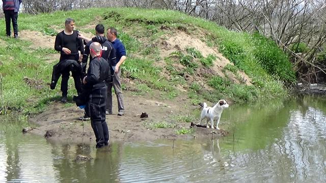 Kaybolan yaşlı adamın köpeği ekiplerin yanından ayrılmadı