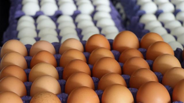 YUM-BİR Başkanı Afyon, yumurta fiyatlarını değerlendirdi