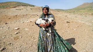 Kaşkay Türklerinin yaylaya göçü başladı