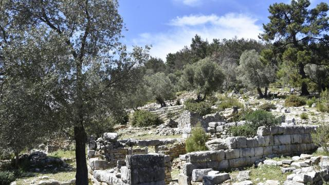 Pedasa Antik Kentinde Destek Protokolü kapsamında çalışmalar başladı
