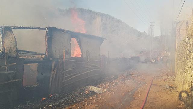 Amasyada ahır yangını: 19 hayvan telef oldu