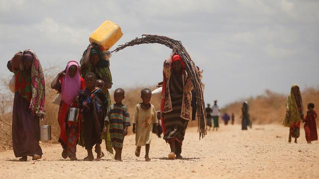 Somalide kuraklık ülkenin en az yüzde 80ini etkiliyor
