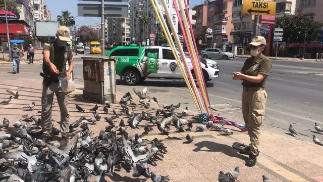 Mersinde polisler tam kapanmada sokak hayvanlarını besledi