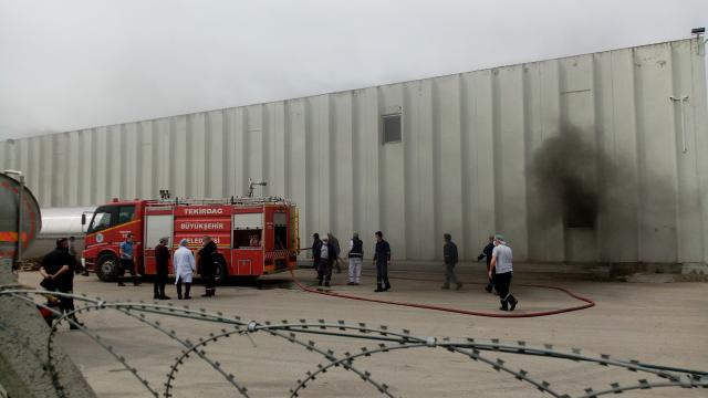Tekirdağda fabrikada yangın