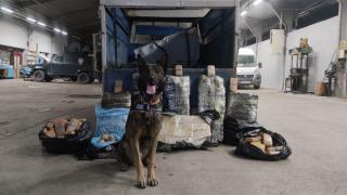 Narkotik köpeği 'Rexo' sayesinde 216 kilo uyuşturucu ele geçirildi
