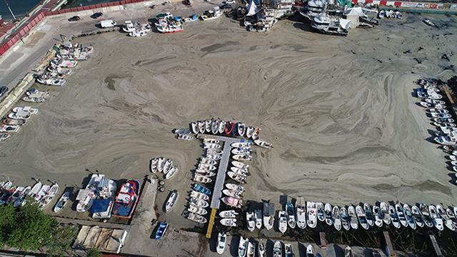"""Tekirdağda tekne balıkçılarına """"deniz salyası"""" engeli"""