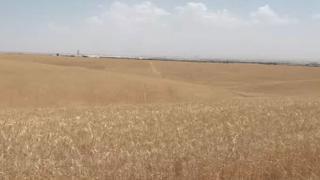 Irak'ta kuraklık tehlikesi