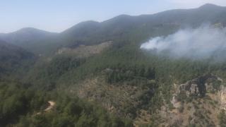 Muğla'nın Ortaca ilçesinde orman yangını başladı