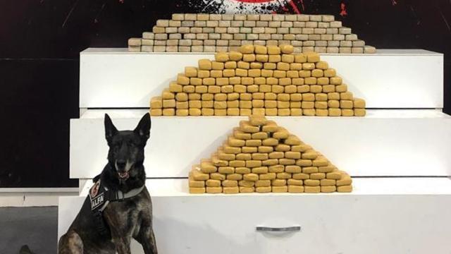 Polisin durdurduğu kamyonetten 139 kilo uyuşturucu çıktı