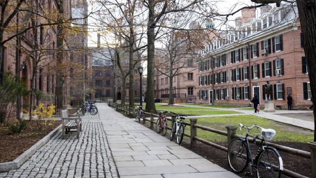 Yale Üniversitesindeki öğrenci başkanlığında ilk kez bir Müslüman