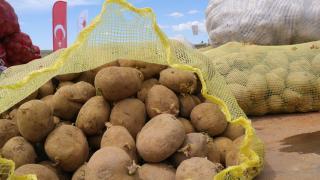Yozgat'ta yerli patates çeşitlerini yaygınlaştırmak amacıyla deneme ekimi yapıldı