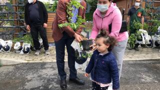 Üsküdar'da Anneler Günü mor salkım fidesi hediye edilerek kutlandı