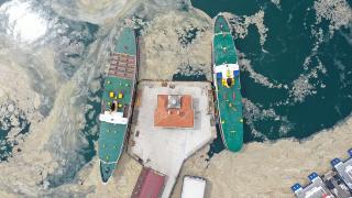 Marmara Denizi'ndeki 'deniz salyası' tehdidi artıyor